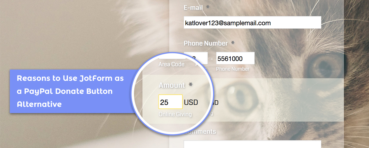 Reasons to Use JotForm as a PayPal Donate Button Alternative