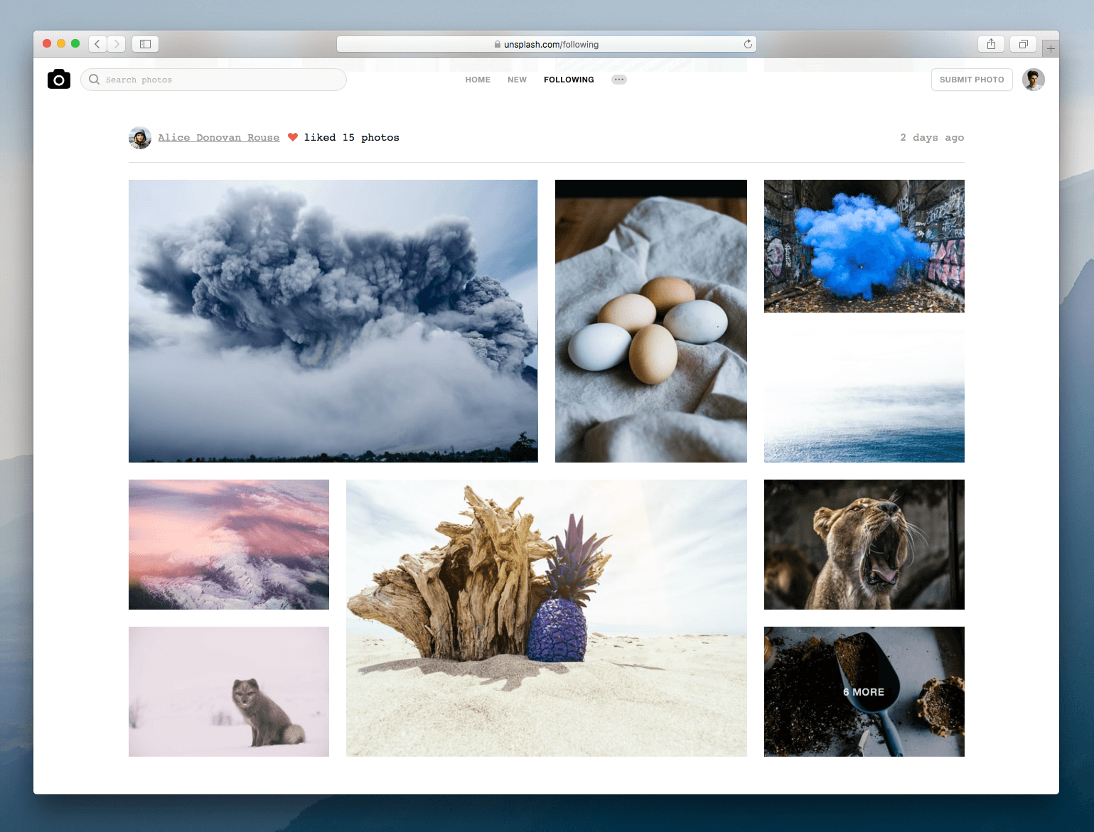 Unsplash: Big Update for the Free Photo Platform Makes it Even Better