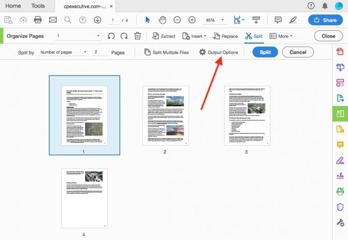 split PDF files in Adobe step 4