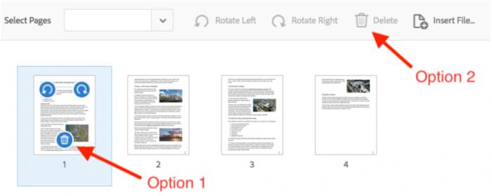 Adobe, option 1 and 2