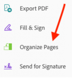 Organize Pages, Adobe