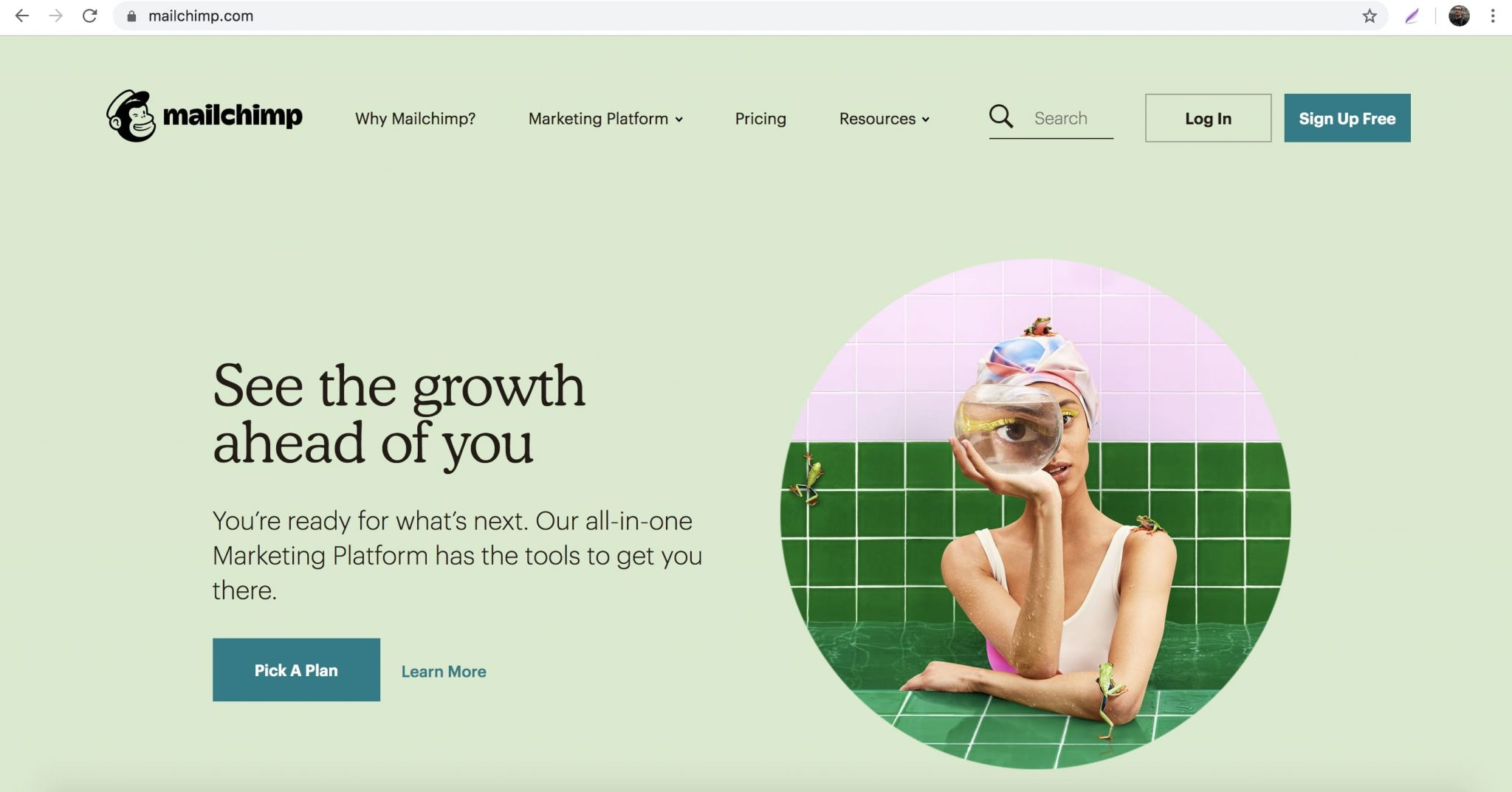 MailChimp Is A Great Tool To Send Email Newsletters