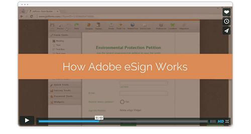 See How eSign Widget Works video